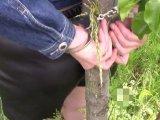 Amateurvideo Am Baum, mit Kapuze und mit Handschellen gefesselt von bondageangel