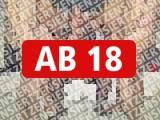 Amateurvideo 4 User pissten mir gleichzeitig in mein Maul! Fan-Treffen Berlin! von RosellaExtrem