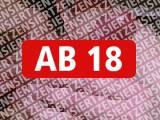 Amateurvideo Leidenschaftlicher Blowjob von Amateurboy