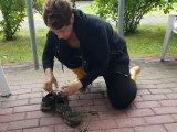 Amateurvideo Kundenwunsch - Sneaker Hölle! von Zartes_Fleisch